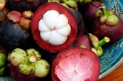 MANGOSTEEN- COLOMBIA - 2 KG BOX