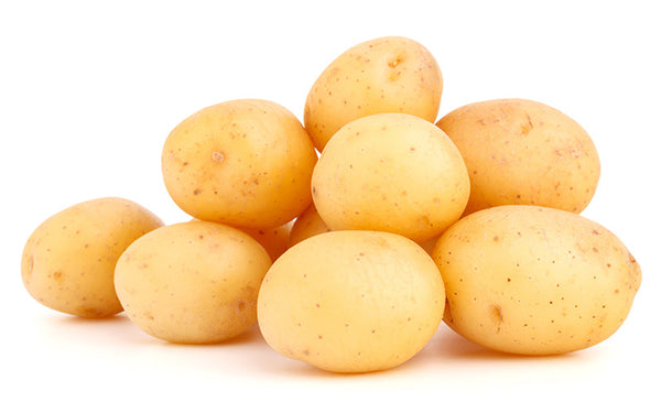 POTATO - EGYPT - Mabrook