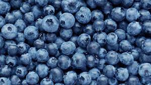 BLUEBERRY - 120 GM PACKET