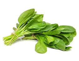 SPINACH GREEN - BUNCH