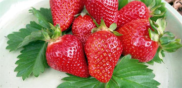 STRAWBERRY  Packet Approx 250 g