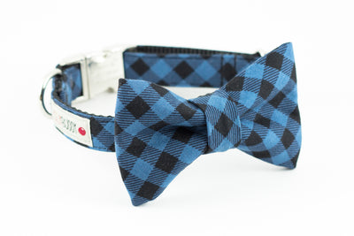 Blue and black buffalo plaid dog bowtie collar.