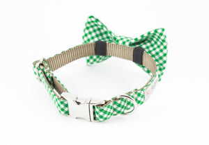 Green and white gingham dog bowtie collar.