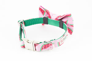 Pink watermelon print dog bowtie collar.