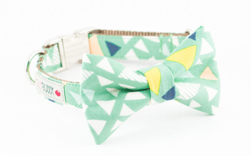 Mint green triangle print dog bowtie collar.