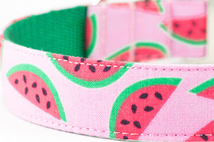 Pink Watermelon Dog Collar