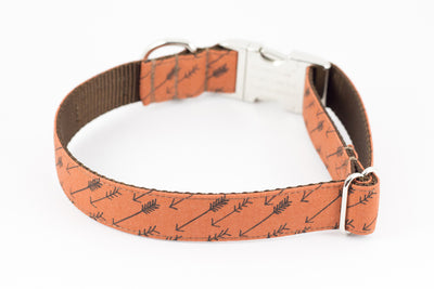 Arrow Dog Collar