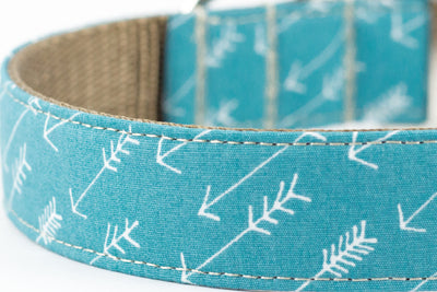 Arrow Ocean Leash