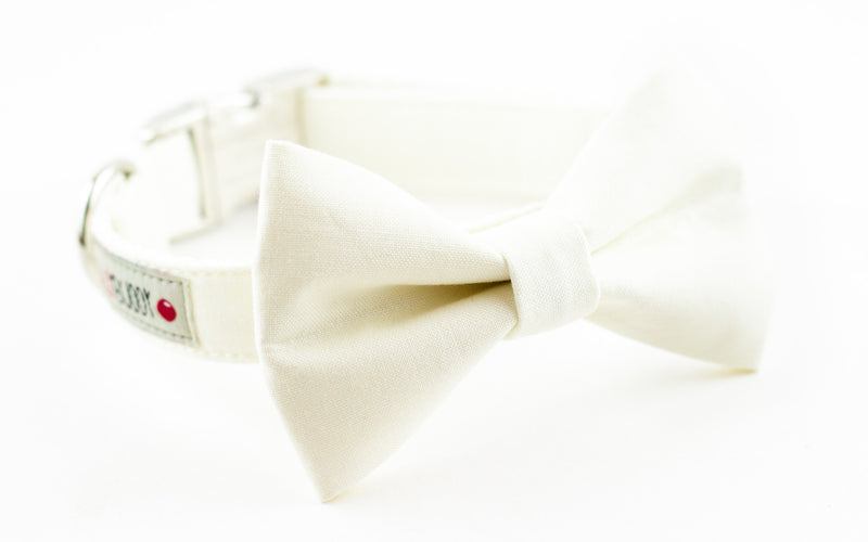 Solid white ivory cotton dog bowtie collar.