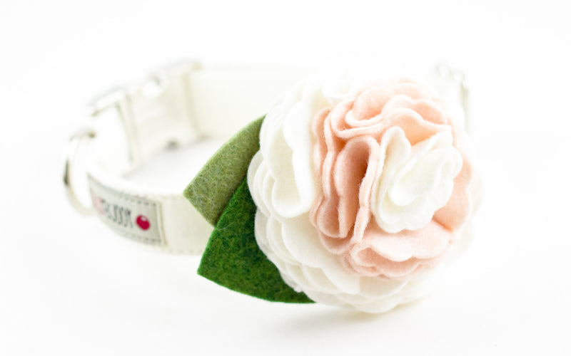 White Dog Flower Collar