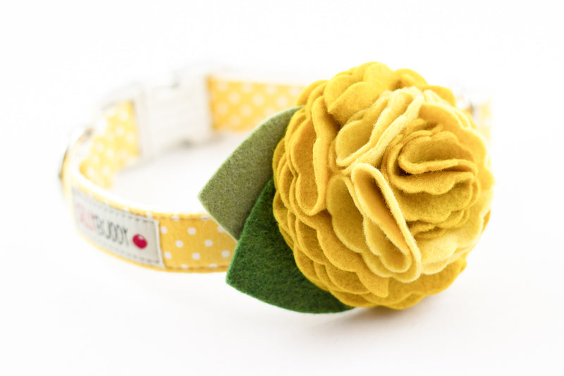 Yellow Dot Flower Dog Collar