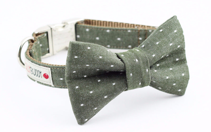 Olive green polka dot chambray dog bowtie collar.