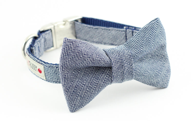 Navy blue herringbone dog bowtie collar.