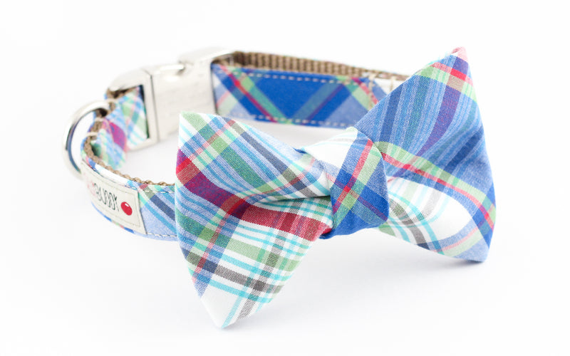 Blue and white preppy plaid dog bowtie collar.