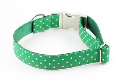 Green Dot Dog Collar