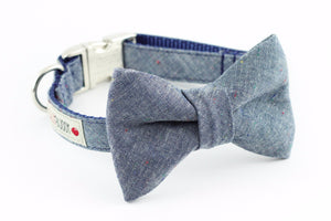 Blue chambray dog bowtie collar.