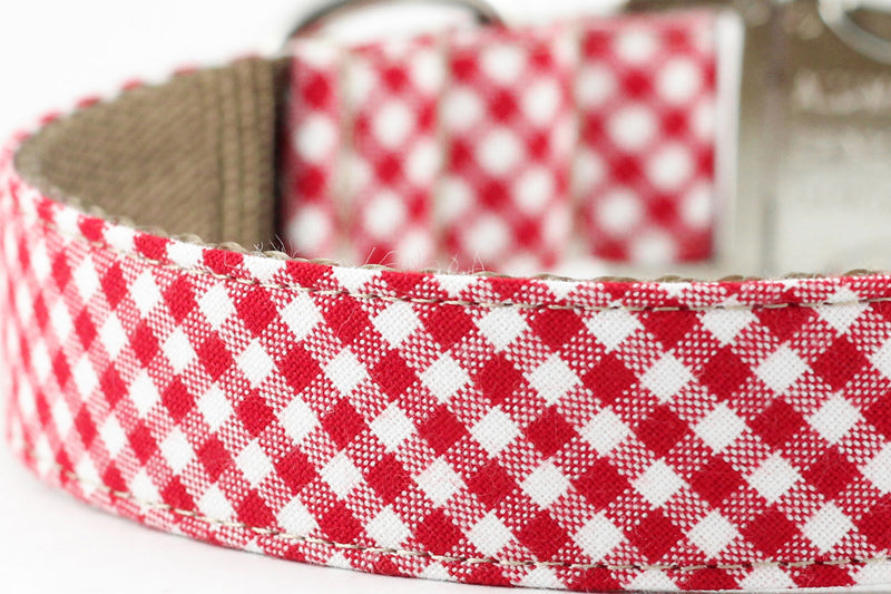 Red Gingham Leash