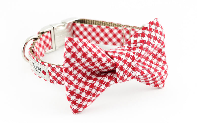Red and white gingham dog bowtie collar.