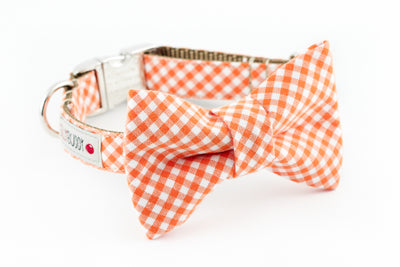 Orange and white gingham dog collar with bowtie.