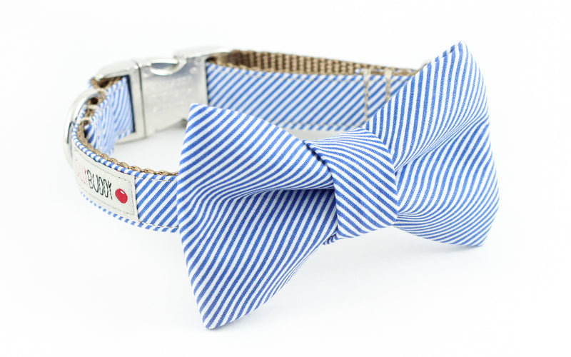 Blue and white pinstripe seersucker dog bowtie collar.
