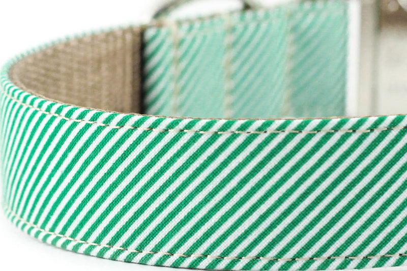 Green Pinstripe Dog Collar