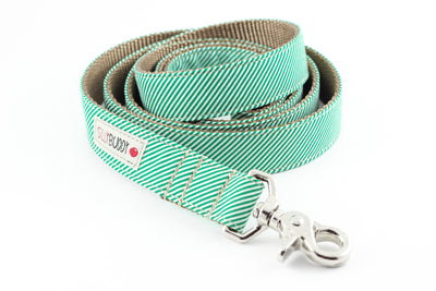 Green Pinstripe Dog Leash