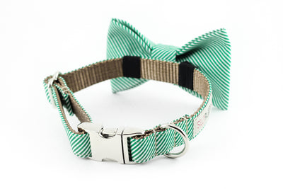 Kelly green and white pinstripe dog bowtie collar.