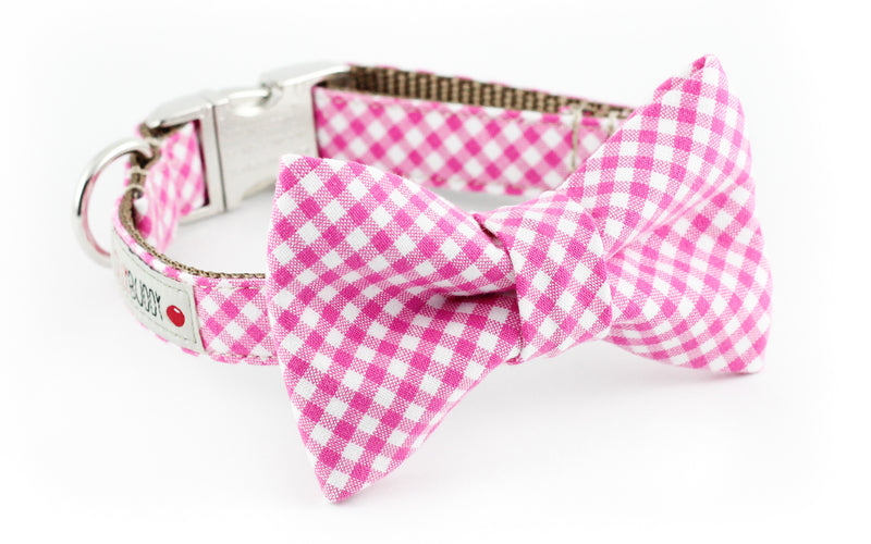 Pink and white gingham dog bowtie collar.