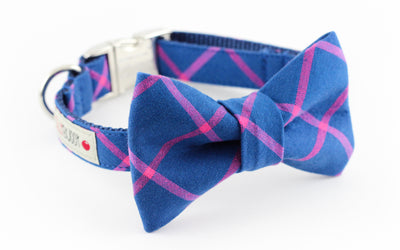 Blue Plaid Bowtie