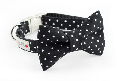 Black polka dot dog bowtie collar.