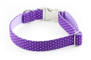 Purple Dot Dog Collar