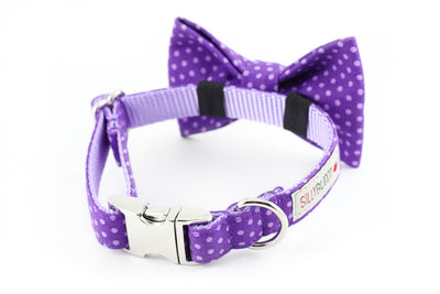 Purple Dot Bowtie