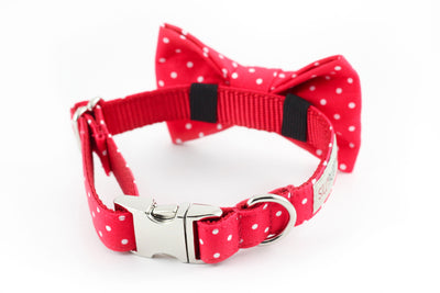 Red Dot Bowtie
