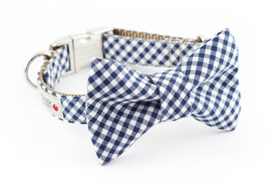 Navy blue and white gingham dog bowtie collar.