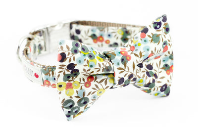 Green, purple, yellow, orange liberty of london floral print dog collar with bowtie attachment.