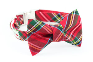 Red and green scottish tartan print holiday bowtie dog collar.