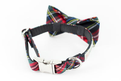 Black and red scottish tartan print holiday bowtie dog collar.