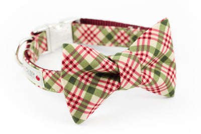 Burgundy and green plaid dog bowtie collar.