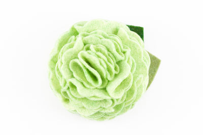 Pastel Green Dog Collar Flower