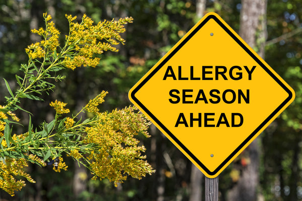 allergy season warning sign
