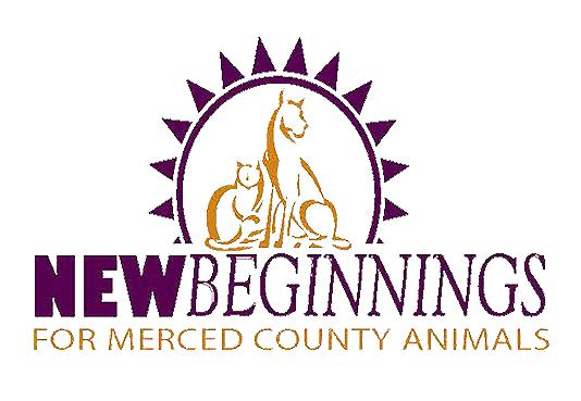 Support New Beginnings Animal Rescue