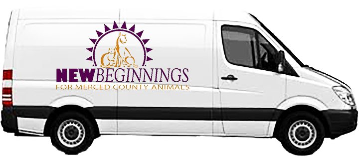 Help New Beginnings buy a transport van for animals