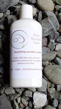 PLUM BLOSSOM FARM ALOE LOTION