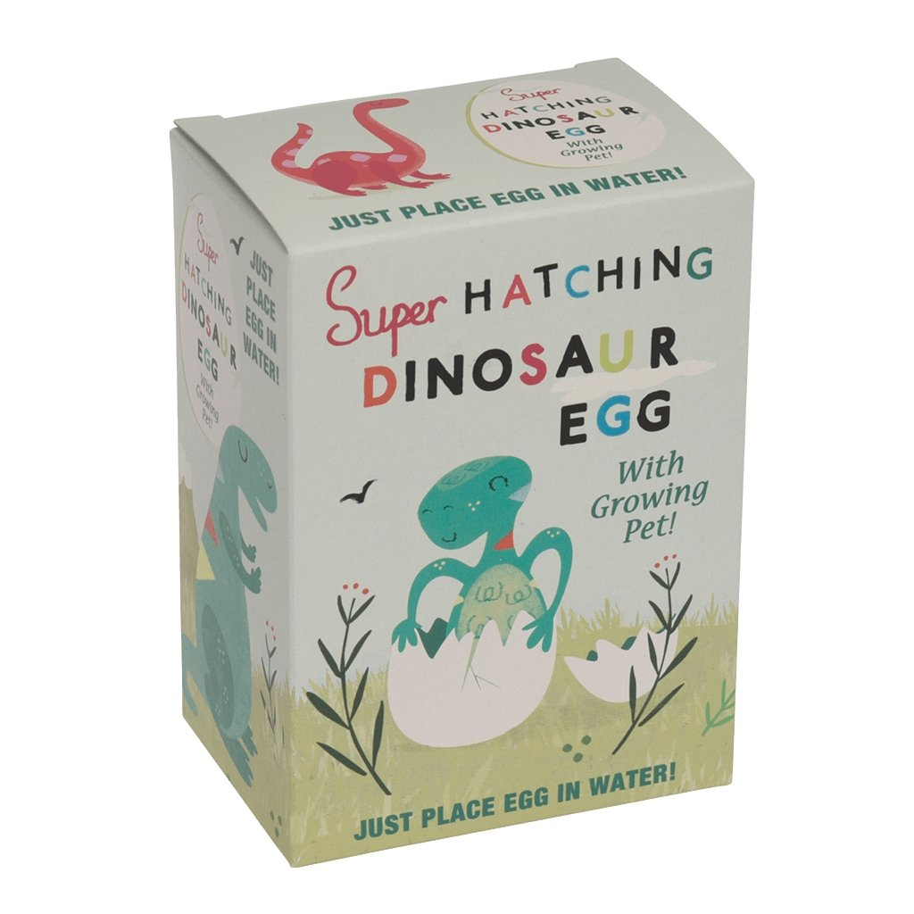 BoxTree Kids | Hatch Your Own Dinosaur Egg | BoxTree | Send a Gift