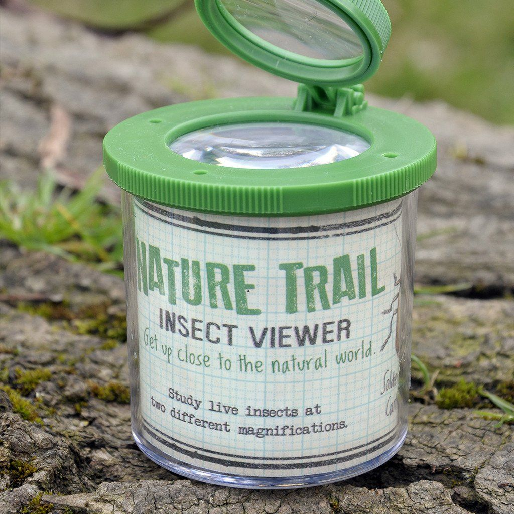 BoxTree Kids | Nature Trail Insect Viewer | BoxTree | Send a Gift