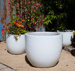 Egg Shell Pot White