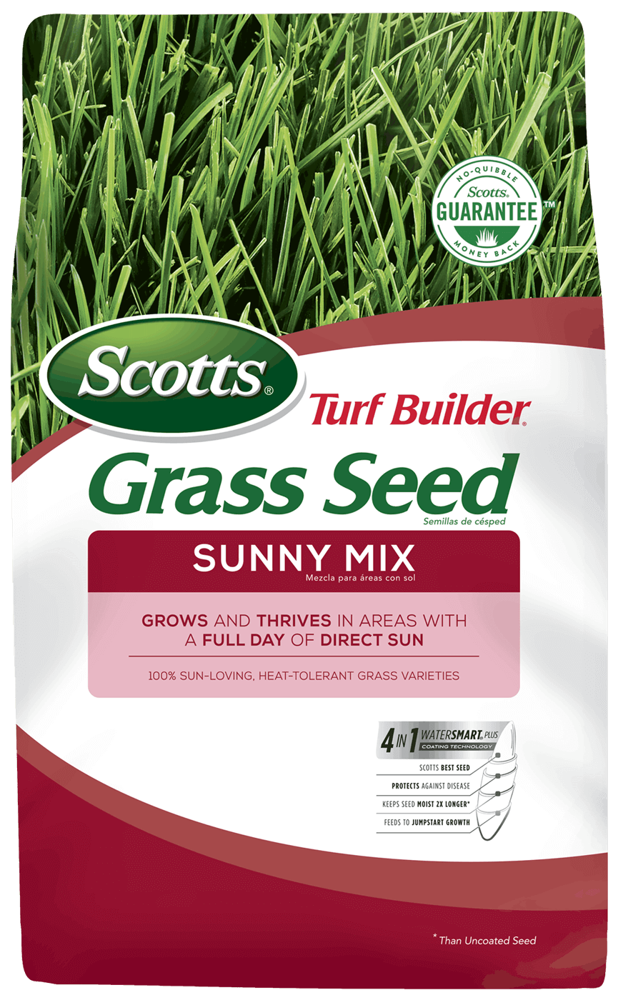 Scotts Turf Builder Sunny Mix Grass