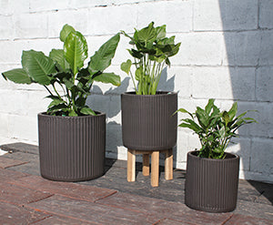 Brulee Planter in Carbon Brown
