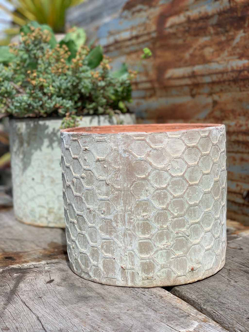 Hexagon Cylinder Planter Atlantis