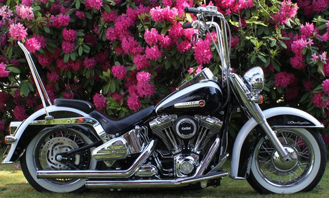 2007 Deluxe Hell Bent Hardcore With Ginz Softail Rigid Mounts